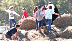 ANGIE LONG - STAFF PHOTOS Ella Gates, (far left, in white top) enjoys romping with other youngsters on the big hay slide at Farm Day. Her dad Dale says all his children enjoy the annual event.