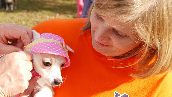 """Stephanie Morrison Blue helps with little Lilly as Kandys Killough adjusts the foster pet's pretty bonnet. Lilly earned the title of """"Smallest Superstar"""" at the Butler County Humane Society's Bark in the Park Sunday at Greenville's Confederate Park. (Advocate Staff/Angie Long)"""