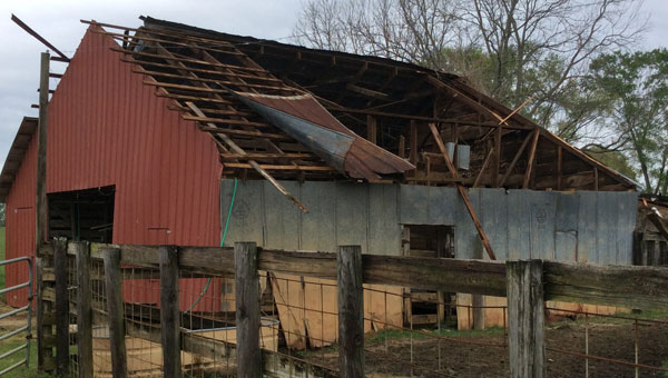 This barn, located in Brantley, was hit and badly damaged by the storms that came through last Thursday.  The running total of structures damaged is four barns, three residences and three businesses.