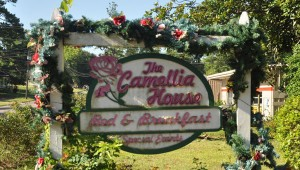 Kathy Dowdy has owned and operated the Camellia House for the past 13 years. (Photos by Beth Hyatt)
